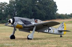 Fw190ThomasPfueller10.jpg