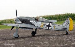 Fw190ThomasPfueller4.jpg