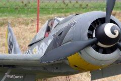 Fw190ThomasPfueller7.jpg
